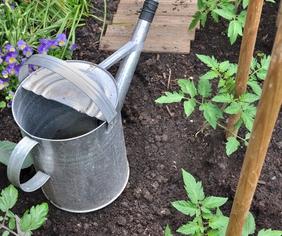 Envie de partager un jardin ?