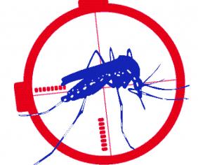 Luttons contre le moustique tigre !